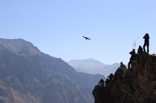Colca Valley, Colca Canyon, and...