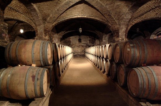 Santa Rita Winery Half-Day Tour from ...