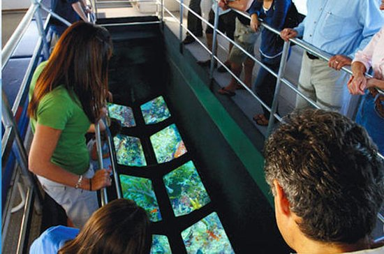 Key West Glass-Bottom Boat, Coral Reef Tour with Sunset Option