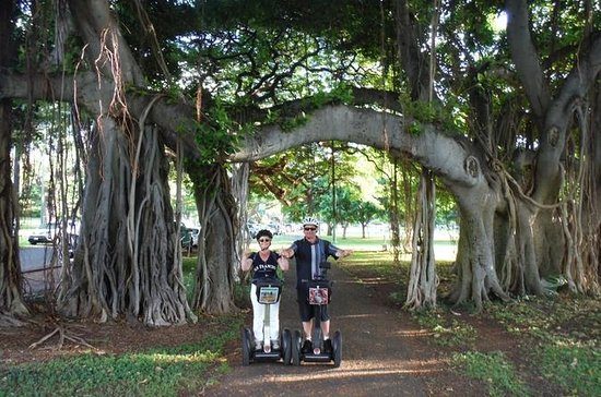 Honolulu Segway Tour: Kapiolani Park, Makalei Beach Park and Queen's...