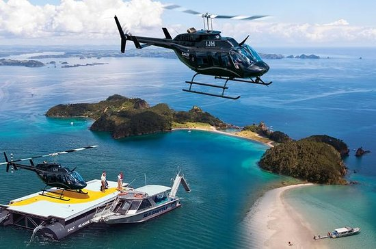 Crucero por la Bay of Islands y...