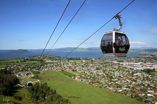 Rotorua Gondola with optional Luge...