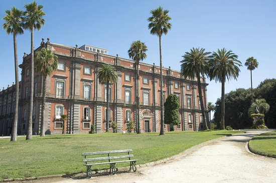 Private Tour: Capodimonte Museum in ...
