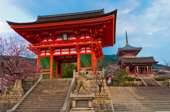 Private Kyoto Tour: Shintoism and ...