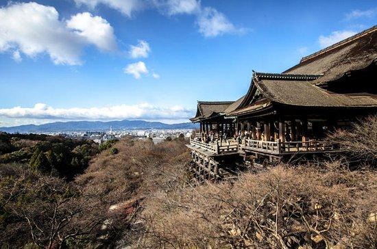 Recorrido a pie por Kioto con guía...