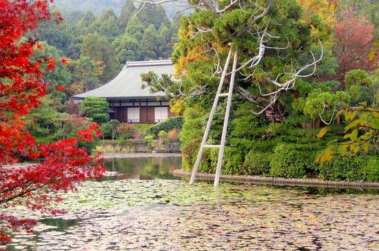 Private Scholar-led Kyoto Walking...