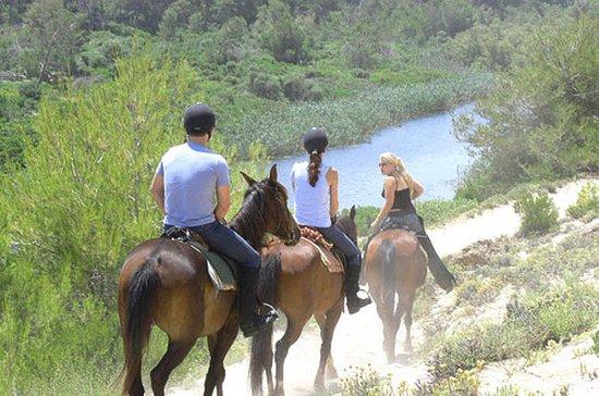 Mallorca avondtour: paardrijden ...