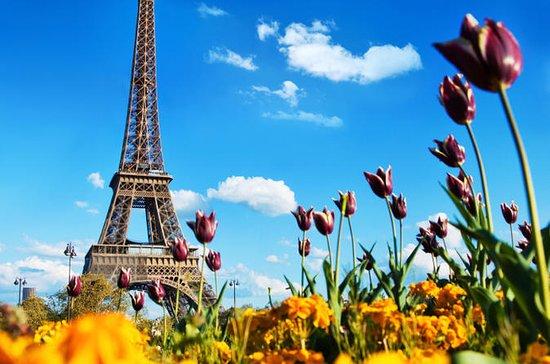 Paris: Tagesausflug ab London...