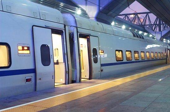 Trasferimento privato all'arrivo: dalla stazione ferroviaria di Roma