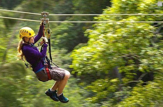Big Island Kohala Canopy Zipline. & Hilo vs Kona - Island of Hawaii Forum - TripAdvisor