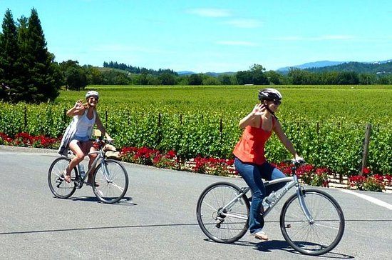 Wine Country Bike Tour and Picnic...