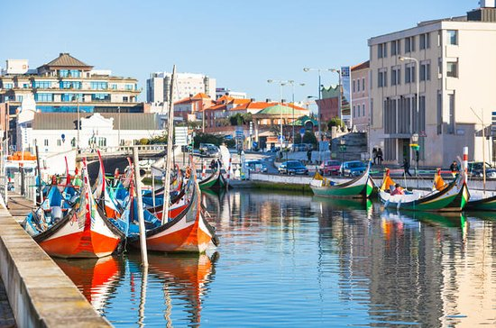 Porto to Aveiro Half-Day Tour with...