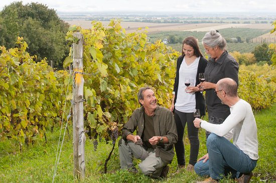 Quebec Small-Group Wine Tour from...