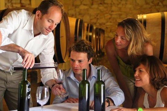 Excursão privada: Degustação de Vinho...