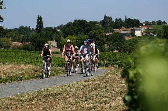 Bordeuax to St-Emilion Bike Tour with...