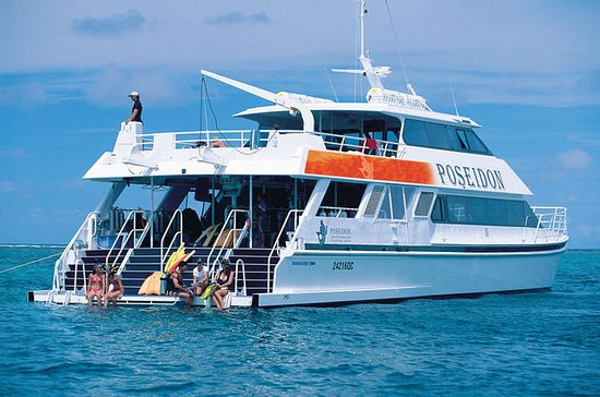 Great Barrier Reef Snorkeling Cruise...