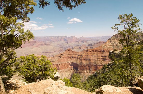 Grand Canyon South Rim Day Trip from...