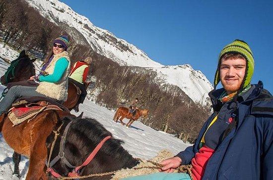 ラニン国立公園乗馬ツアー:Quila Quina ValleyとMapuch…