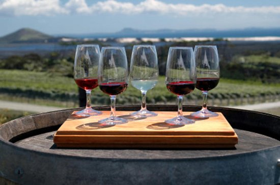 Maipú Wine-Tasting Tour from Mendoza...