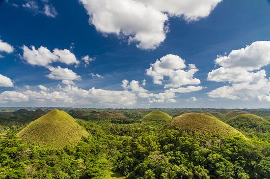 Bohol Tour: Chocolate Hills, Tarsier...