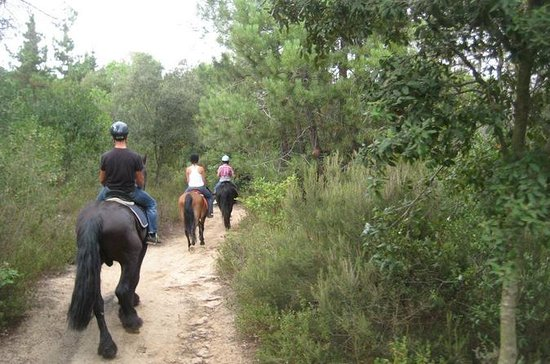 Horseback Riding Tour in Natural Park...