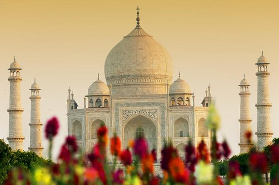 Viator Exclusive: Private Taj Mahal and Agra Fort Tour, Dine with a...