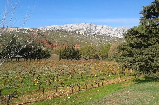 Cotes de Provence Wine Tour from...