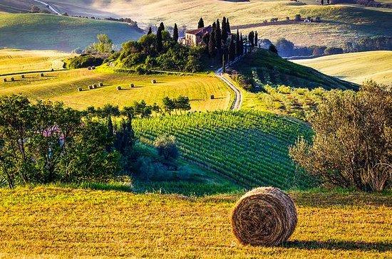 Recorrido de gastronomía y vinos toscanos en Val d'Orcia desde...