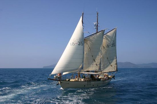 Tallship Sailing and Snorkeling Adventure from the Whitsundays