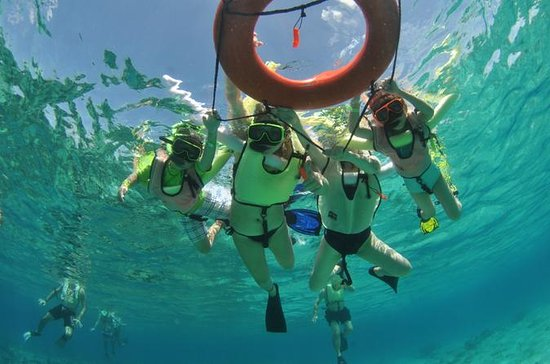 Caribbean Snorkel Tour in Grand