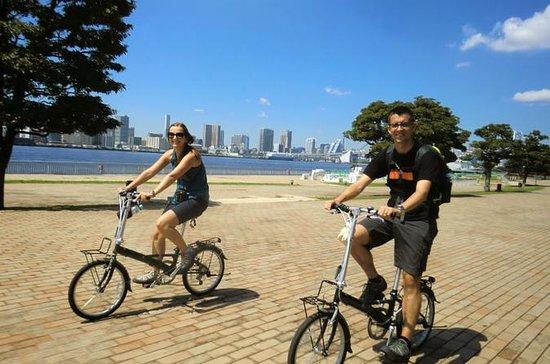 Radtour durch Tokio: Tsukiji-Markt, Odaiba, Bootstour in der Bucht...