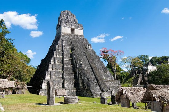 Tikal Mayan Ruins History and Nature...