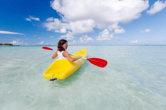 Curacao Kayak and Snorkel Adventure