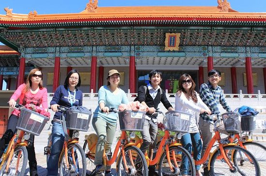 Taipei in Motion: City Day Tour med...