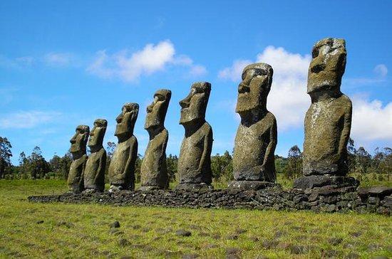 Visite archéologique Moai sur l'île...