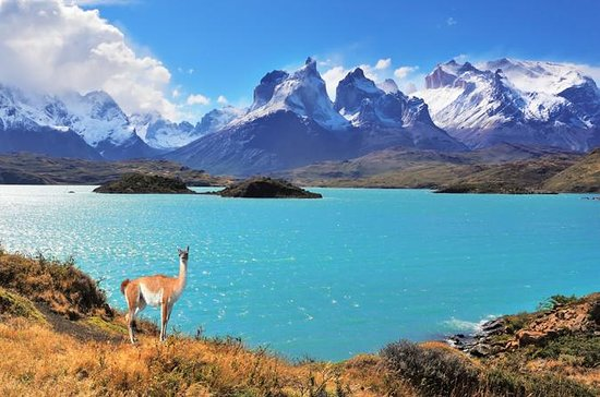 Torres del Paine National Park in One...