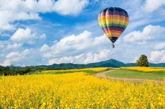 Hot Air Balloon Flight Over Tuscany ...