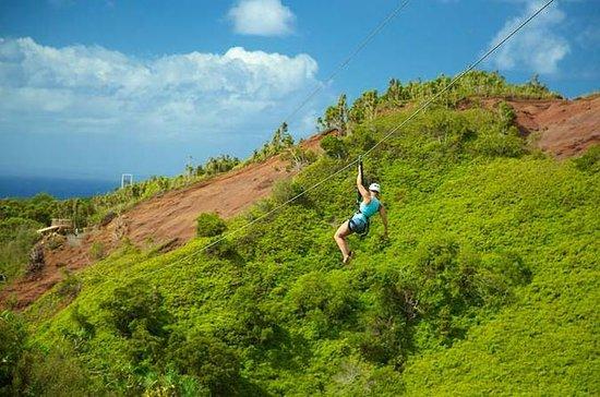 Kauai Zipline Tour i Poipu