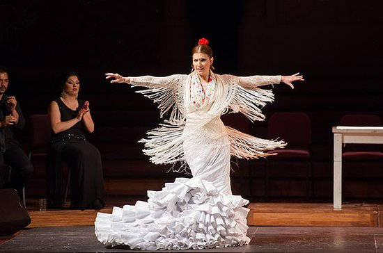 Flamenco Show at a Barcelona Theater