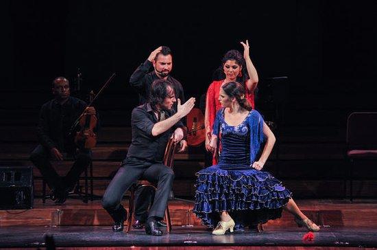 Opera and Flamenco Performance in...