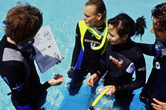 PADI Discover Scuba Diving in Freeport
