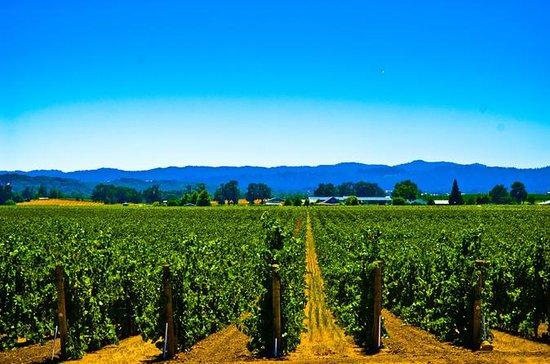 El Dorado Wine Country Tour from...