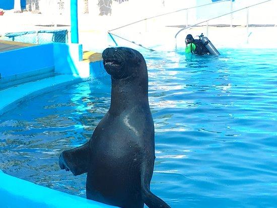 Aquaventuras park: photo4.jpg