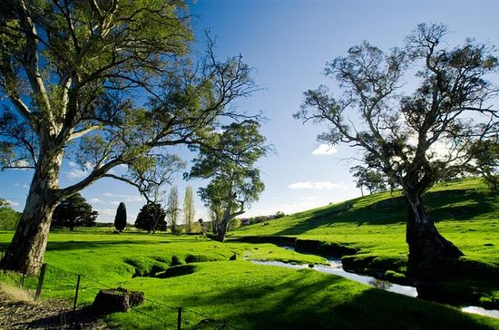 Adelaide Highlights and Hahndorf Tour with River Cruise Option