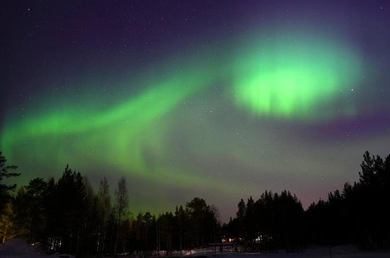 Lapland Northern Lights Safari mit ...