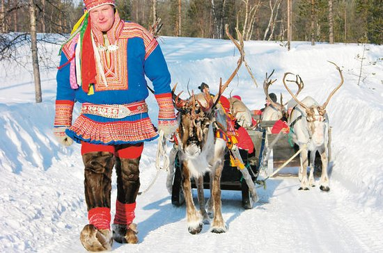 Lapland Reindeer Sleigh Ride from...