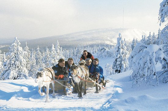 Lapland Snowmobile Safari to a