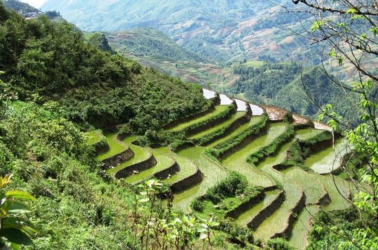 3-Night Sapa Trekking Tour from Hanoi