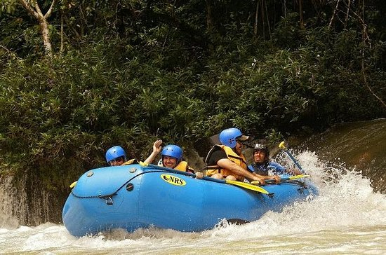 Palenque to Lacandon Jungle River...