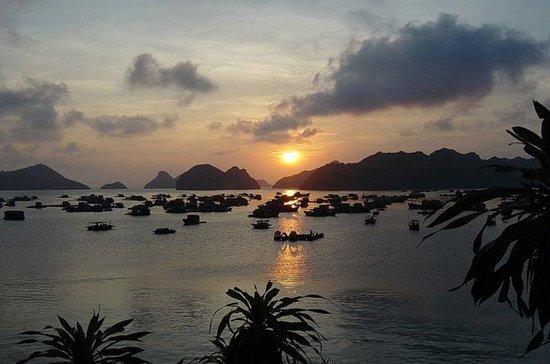 3-tägige Luxusfahrt mit der Bai Tu...